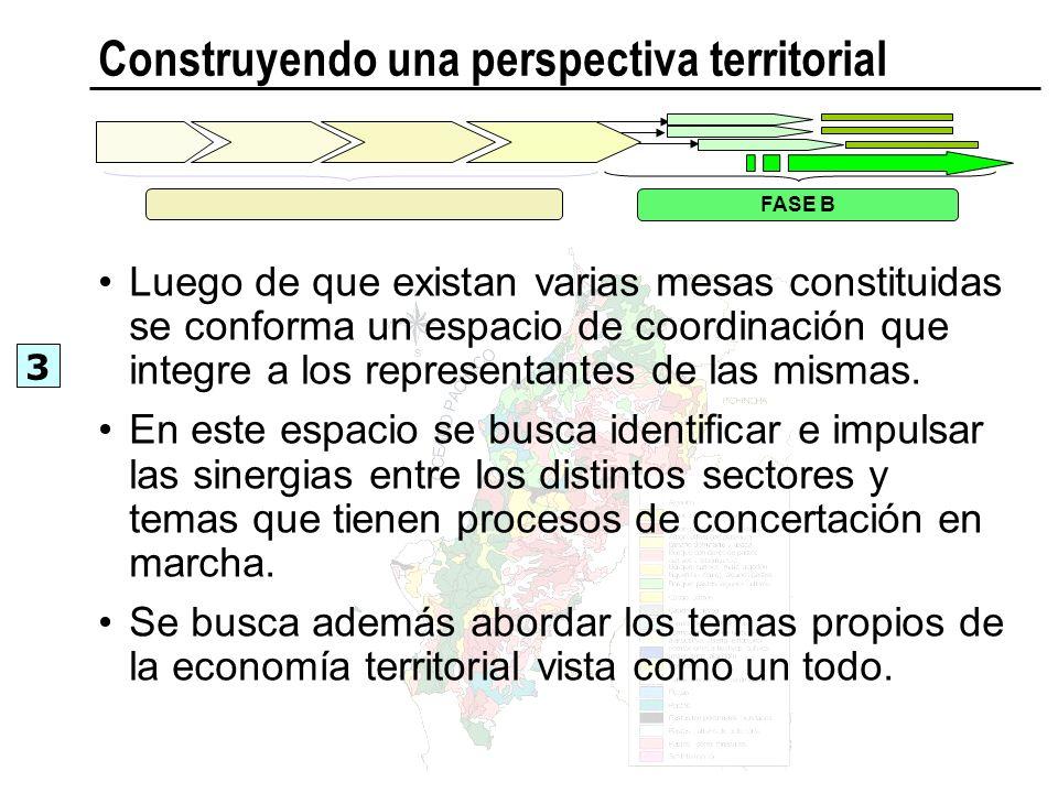 Construyendo una perspectiva territorial Luego de que existan varias mesas constituidas se conforma un espacio de coordinación que integre a los repre