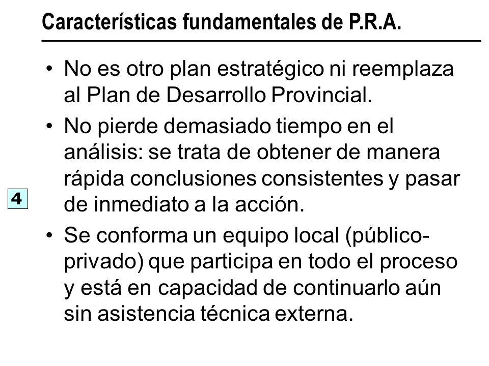 No es otro plan estratégico ni reemplaza al Plan de Desarrollo Provincial. No pierde demasiado tiempo en el análisis: se trata de obtener de manera rá