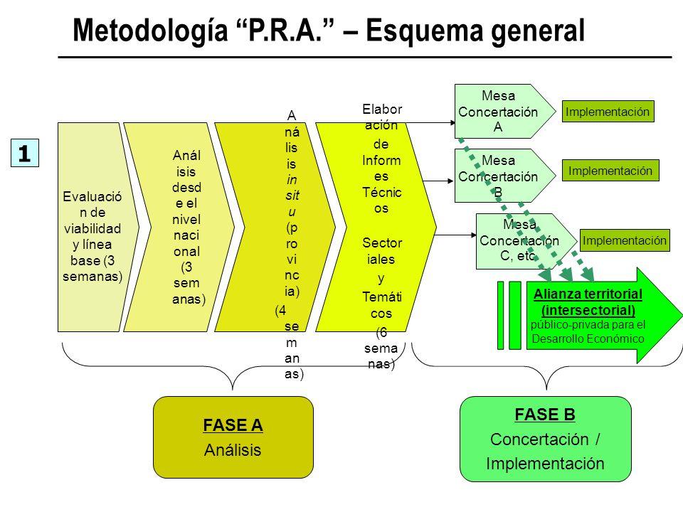 Metodología P.R.A. – Esquema general 1 Evaluació n de viabilidad y línea base (3 semanas) Anál isis desd e el nivel naci onal (3 sem anas) A ná lis is