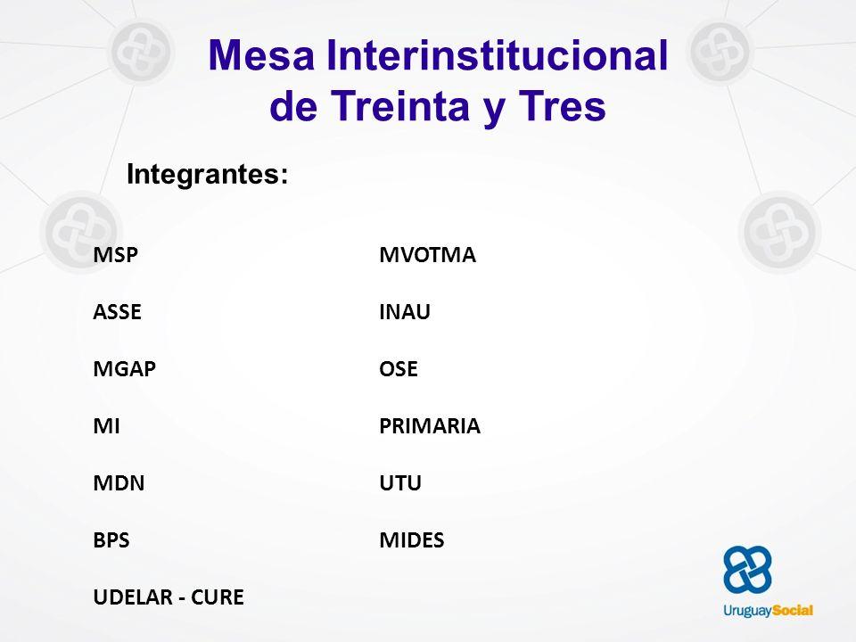 Mesa Interinstitucional de Treinta y Tres Integrantes: MSP ASSE MGAP MI MDN BPS UDELAR - CURE MVOTMA INAU OSE PRIMARIA UTU MIDES