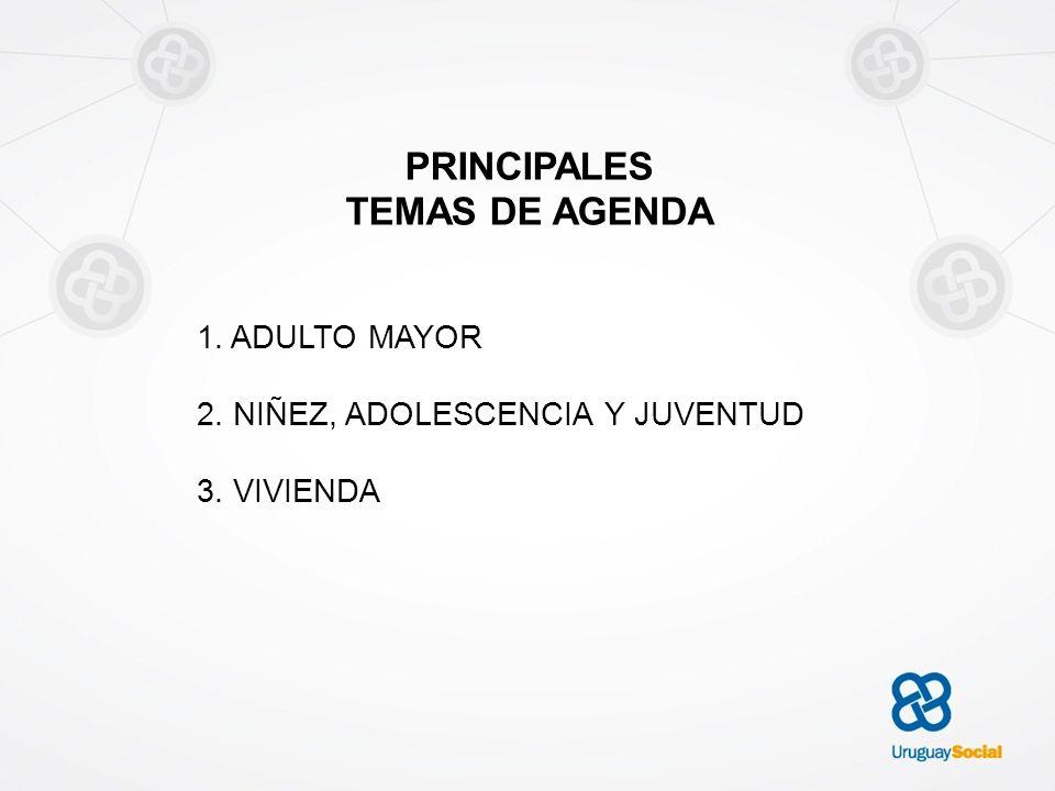 PRINCIPALES TEMAS DE AGENDA 1. ADULTO MAYOR 2. NIÑEZ, ADOLESCENCIA Y JUVENTUD 3. VIVIENDA