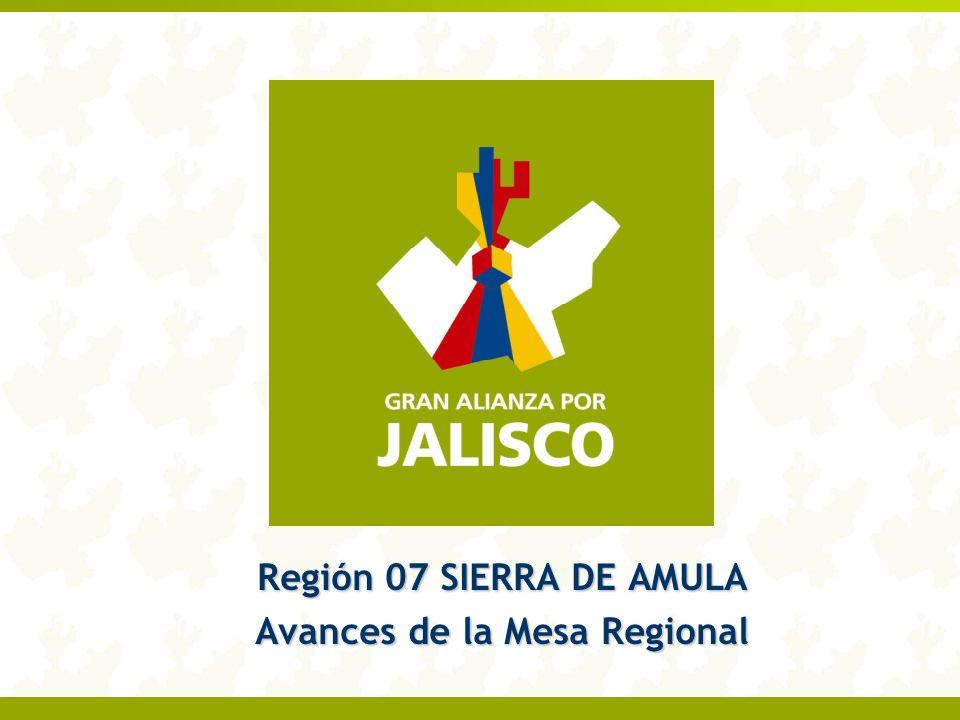 Región 07 SIERRA DE AMULA Avances de la Mesa Regional
