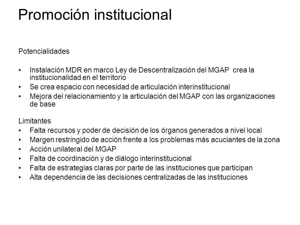 Promoción institucional Potencialidades Instalación MDR en marco Ley de Descentralización del MGAP crea la institucionalidad en el territorio Se crea