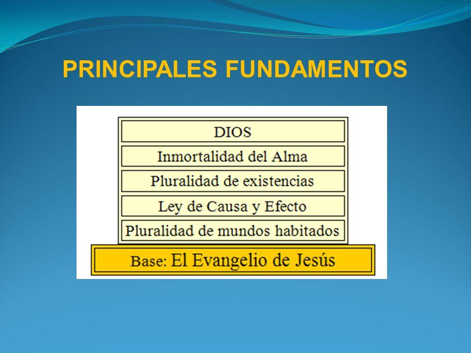 PRINCIPALES FUNDAMENTOS