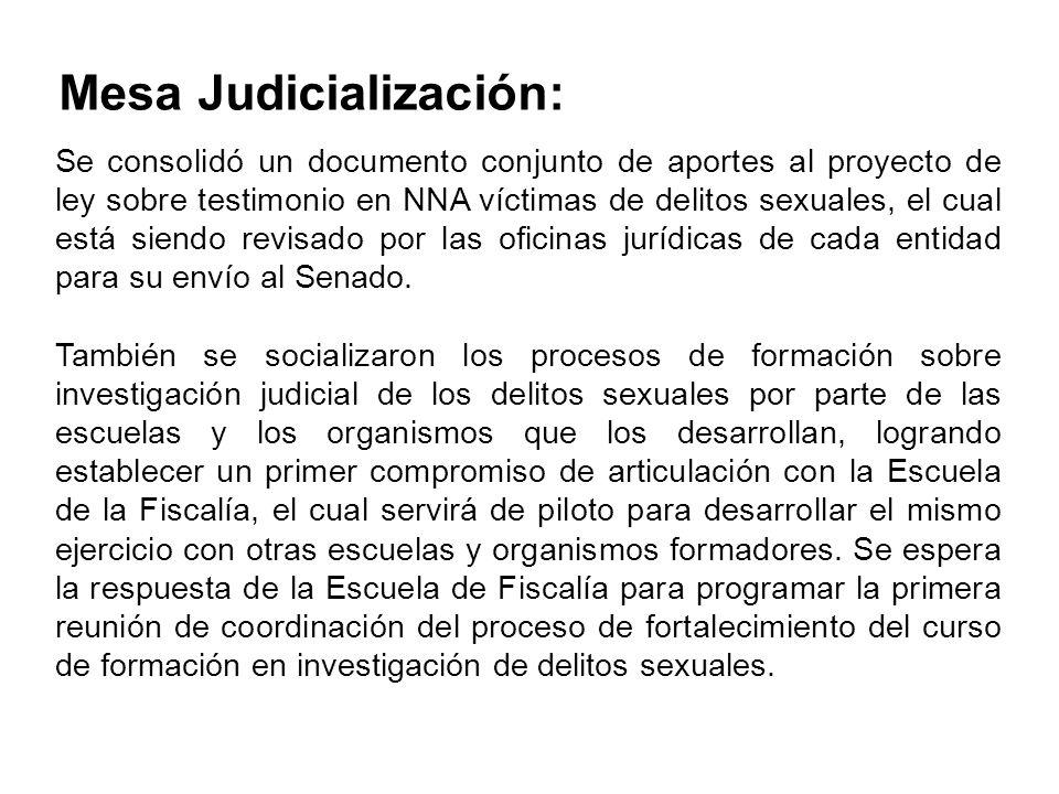 Mesa Judicialización: Se consolidó un documento conjunto de aportes al proyecto de ley sobre testimonio en NNA víctimas de delitos sexuales, el cual e