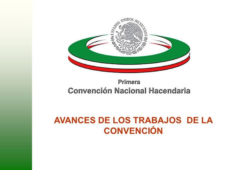 1 AVANCES DE LOS TRABAJOS DE LA CONVENCIÓN