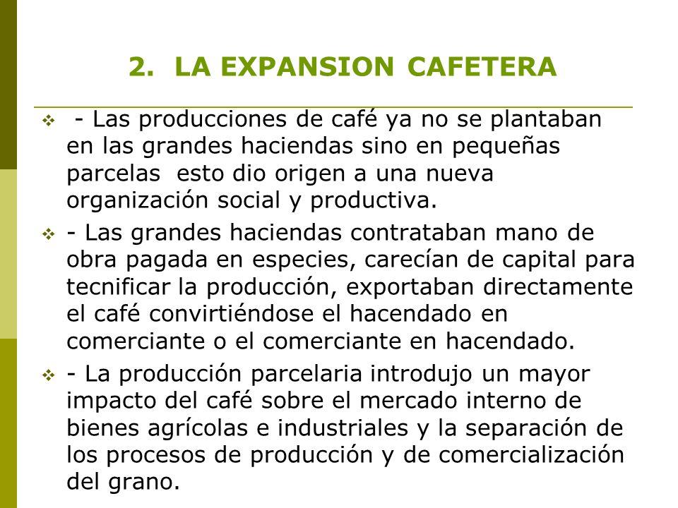 2. LA EXPANSION CAFETERA - Las producciones de café ya no se plantaban en las grandes haciendas sino en pequeñas parcelas esto dio origen a una nueva