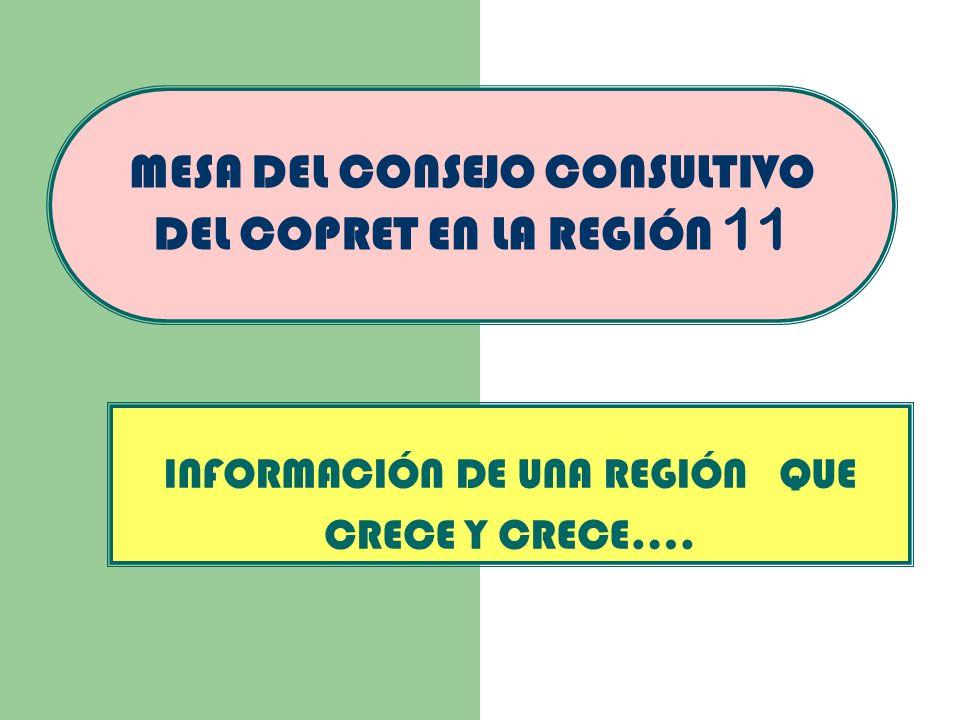 MESA DEL CONSEJO CONSULTIVO DEL COPRET EN LA REGIÓN 11 INFORMACIÓN DE UNA REGIÓN QUE CRECE Y CRECE….