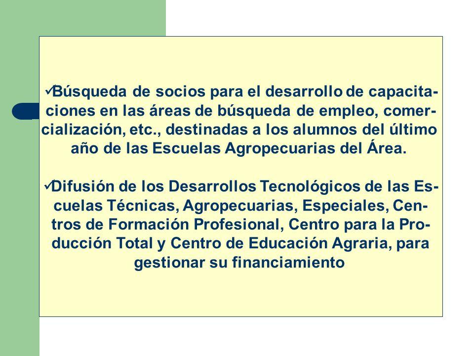 Búsqueda de socios para el desarrollo de capacita- ciones en las áreas de búsqueda de empleo, comer- cialización, etc., destinadas a los alumnos del ú