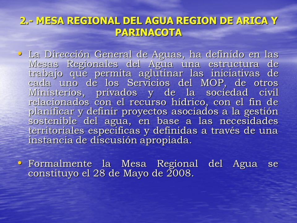 2.- MESA REGIONAL DEL AGUA REGION DE ARICA Y PARINACOTA La Dirección General de Aguas, ha definido en las Mesas Regionales del Agua una estructura de