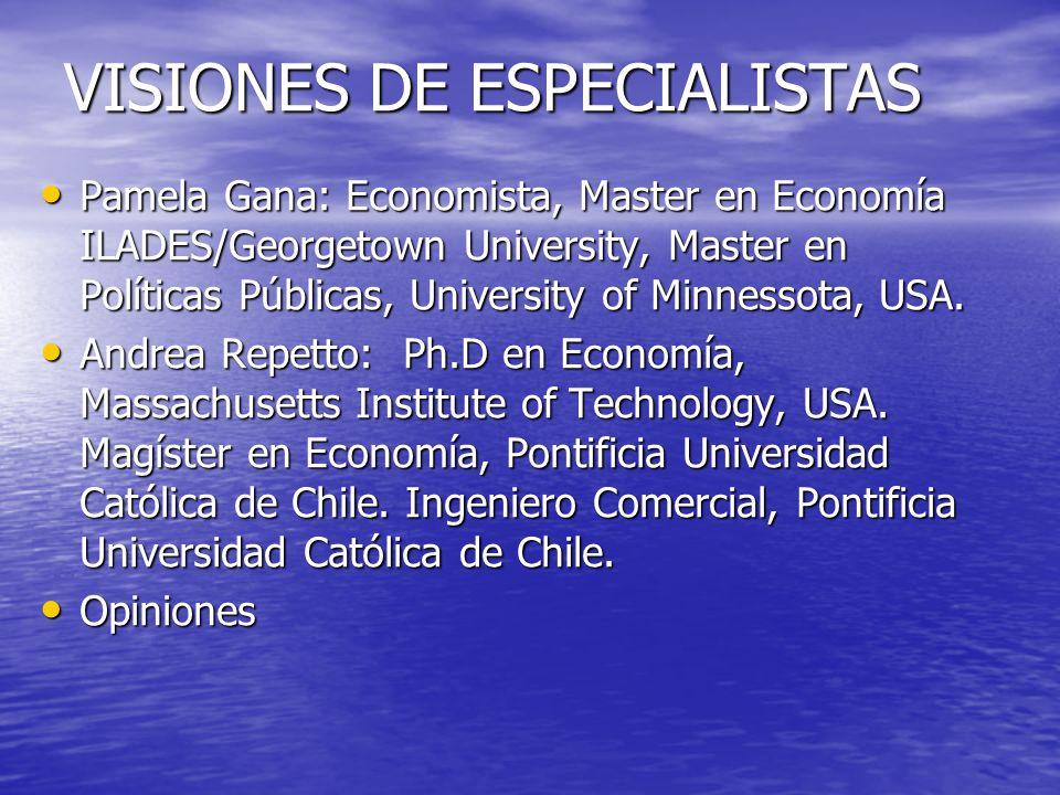 VISIONES DE ESPECIALISTAS Pamela Gana: Economista, Master en Economía ILADES/Georgetown University, Master en Políticas Públicas, University of Minnessota, USA.