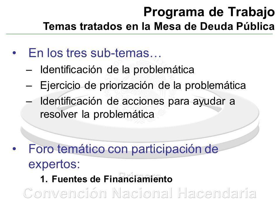 Programa de Trabajo Temas tratados en la Mesa de Deuda Pública En los tres sub-temas… –Identificación de la problemática –Ejercicio de priorización de