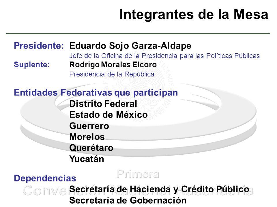 Integrantes de la Mesa Presidente: Eduardo Sojo Garza-Aldape Jefe de la Oficina de la Presidencia para las Políticas Públicas Suplente:Rodrigo Morales