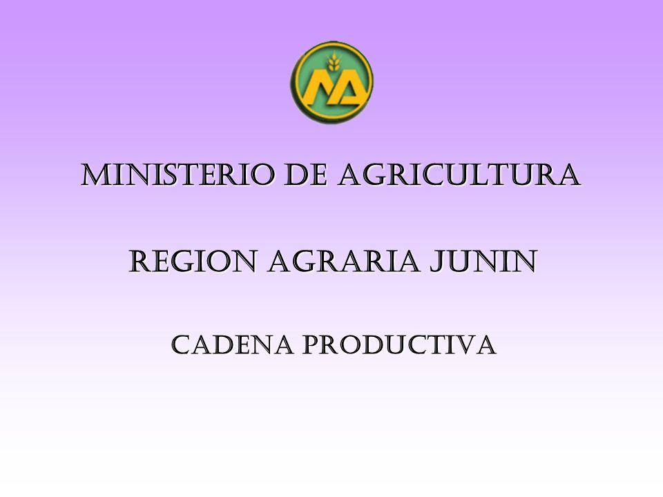 MINISTERIO DE AGRICULTURA CADENA PRODUCTIVA REGION AGRARIA JUNIN