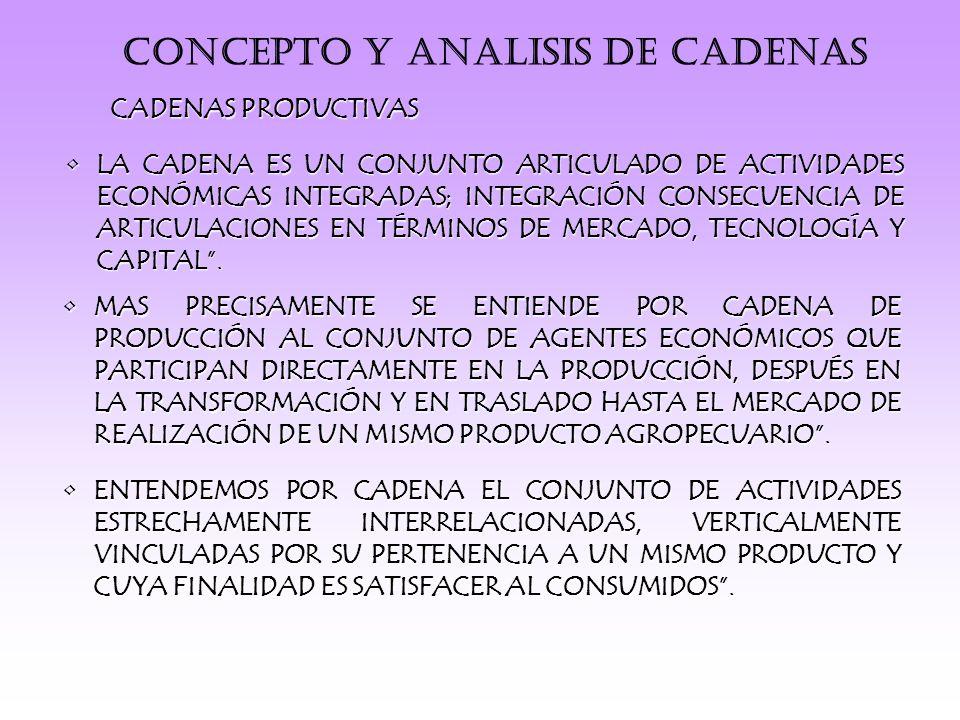 CONCEPTO Y ANALISIS DE CADENAS CADENAS PRODUCTIVAS LA CADENA ES UN CONJUNTO ARTICULADO DE ACTIVIDADES ECONÓMICAS INTEGRADAS; INTEGRACIÓN CONSECUENCIA DE ARTICULACIONES EN TÉRMINOS DE MERCADO, TECNOLOGÍA Y CAPITAL.LA CADENA ES UN CONJUNTO ARTICULADO DE ACTIVIDADES ECONÓMICAS INTEGRADAS; INTEGRACIÓN CONSECUENCIA DE ARTICULACIONES EN TÉRMINOS DE MERCADO, TECNOLOGÍA Y CAPITAL.