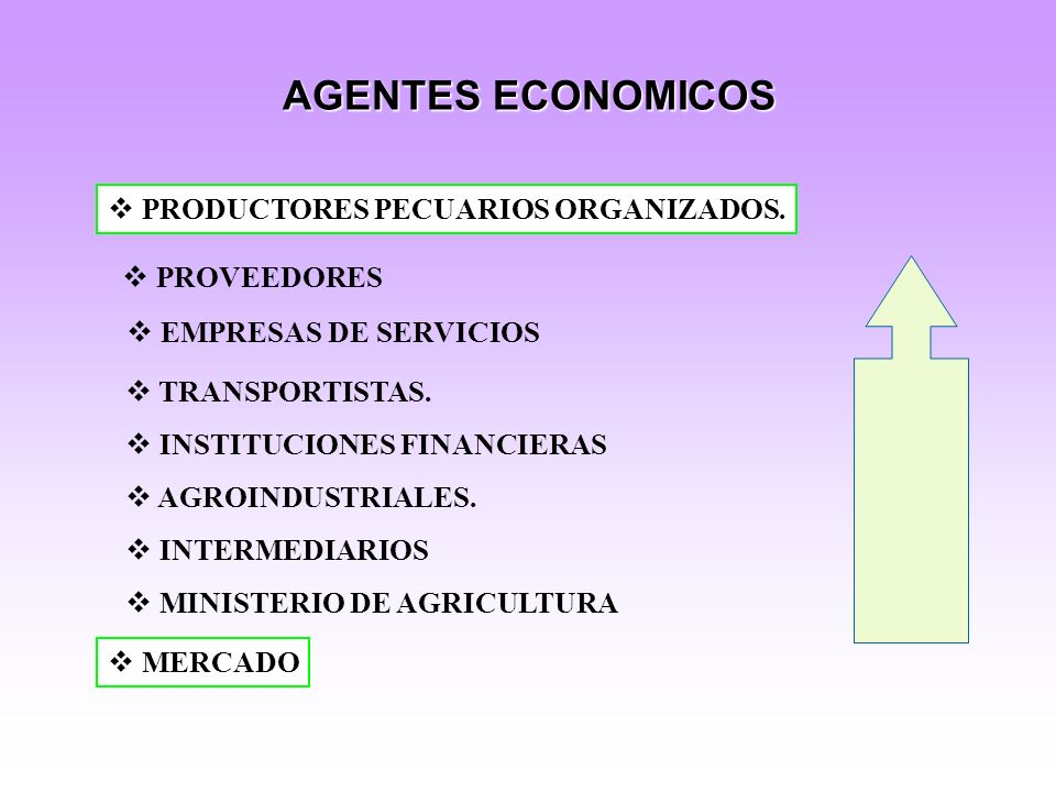 AGENTES ECONOMICOS PRODUCTORES PECUARIOS ORGANIZADOS.