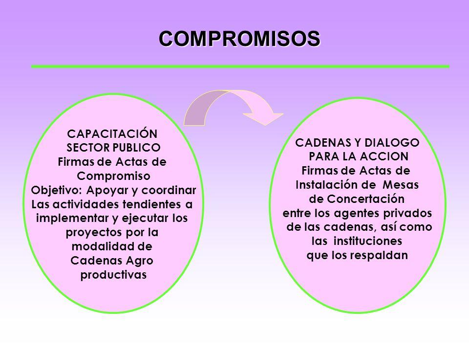 ACTIVIDADES CAPACITACIÓN SECTOR PUBLICO Talleres de sensibilización en Cadenas y Acuerdos de Competitividad CADENAS Y DIALOGO PARA LA ACCION Entrevist