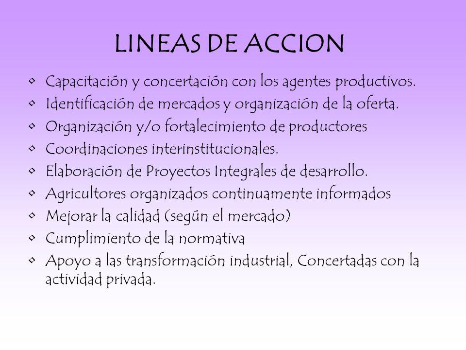 LINEAS DE ACCION Capacitación y concertación con los agentes productivos.