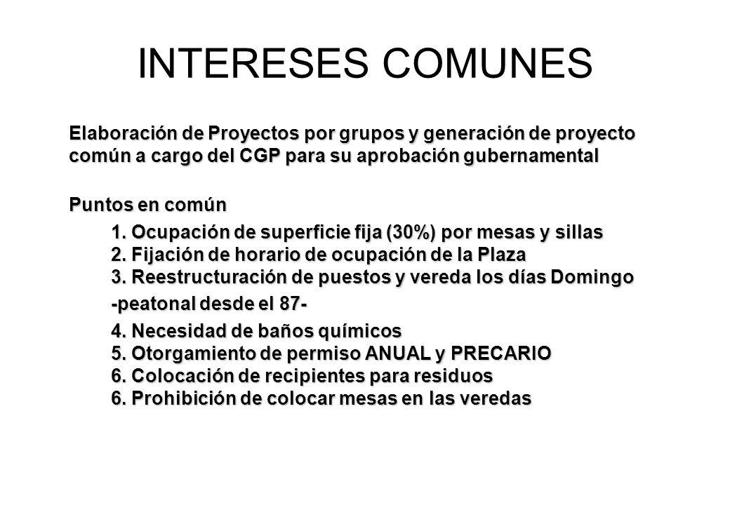 INTERESES COMUNES Elaboración de Proyectos por grupos y generación de proyecto común a cargo del CGP para su aprobación gubernamental Puntos en común 1.