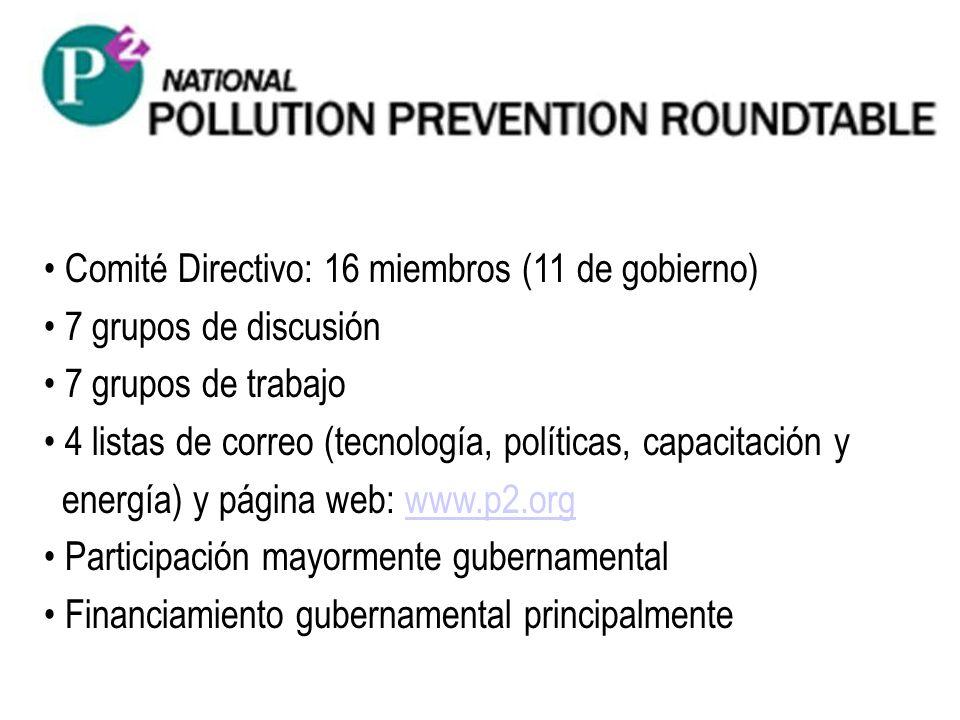 Comité Directivo: 16 miembros (11 de gobierno) 7 grupos de discusión 7 grupos de trabajo 4 listas de correo (tecnología, políticas, capacitación y ene