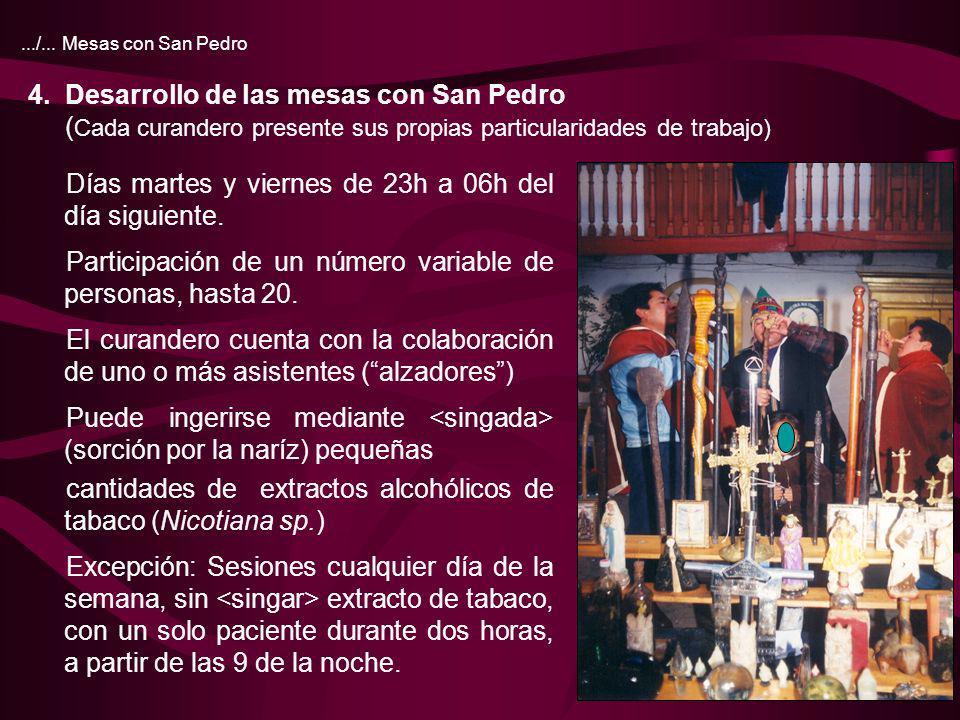 10.../... Mesas con San Pedro 4. Desarrollo de las mesas con San Pedro ( Cada curandero presente sus propias particularidades de trabajo) Días martes