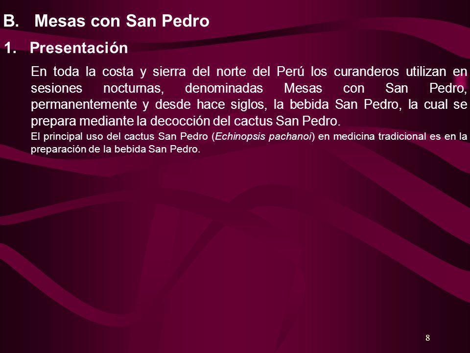 8 B. Mesas con San Pedro 1. Presentación En toda la costa y sierra del norte del Perú los curanderos utilizan en sesiones nocturnas, denominadas Mesas