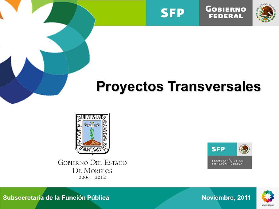 Proyectos Transversales Noviembre, 2011Subsecretaría de la Función Pública