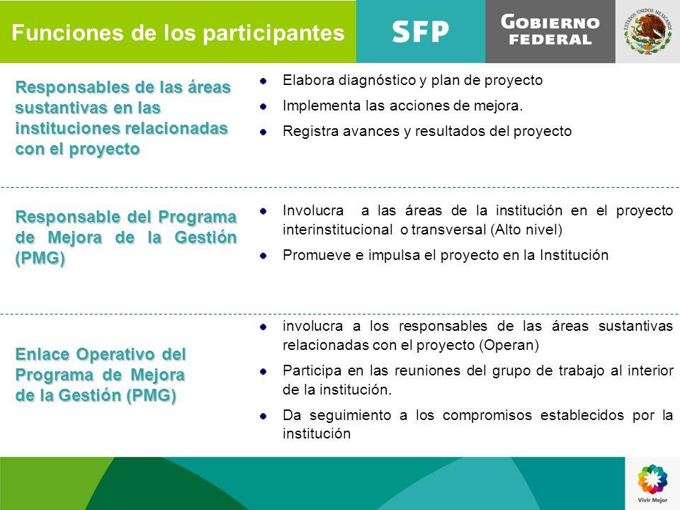 Funciones de los participantes Responsables de las áreas sustantivas en las instituciones relacionadas con el proyecto Elabora diagnóstico y plan de p