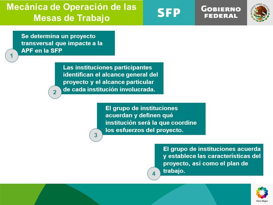 Las instituciones participantes identifican el alcance general del proyecto y el alcance particular de cada institución involucrada. El grupo de insti