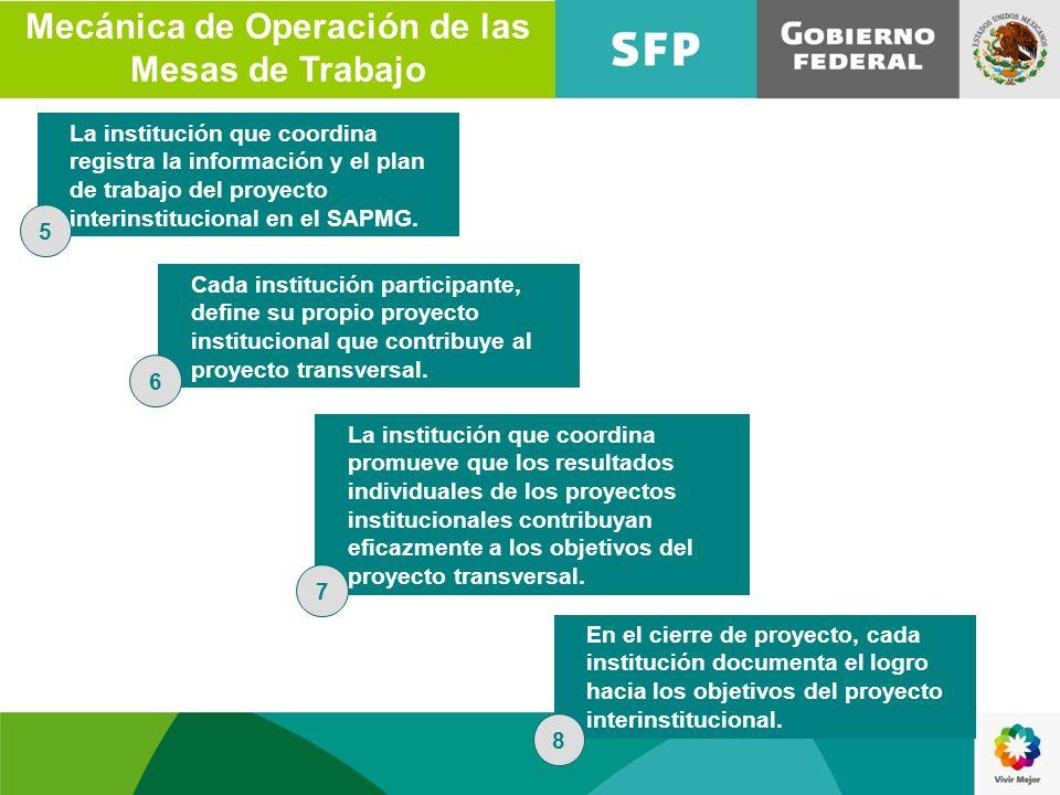 La institución que coordina registra la información y el plan de trabajo del proyecto interinstitucional en el SAPMG. Cada institución participante, d