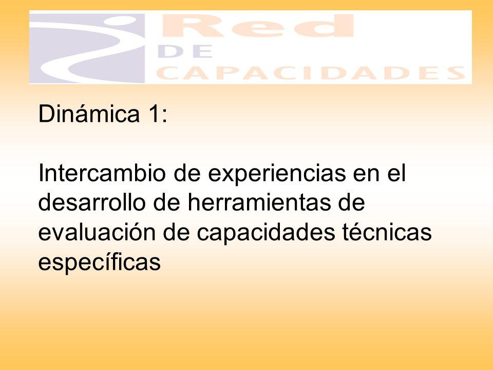 Dinámica 1: Intercambio de experiencias en el desarrollo de herramientas de evaluación de capacidades técnicas específicas