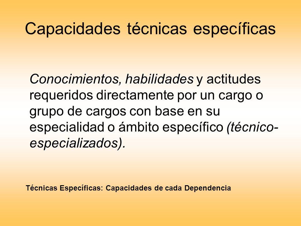 Capacidades técnicas específicas Conocimientos, habilidades (técnico- especializados). Conocimientos, habilidades y actitudes requeridos directamente
