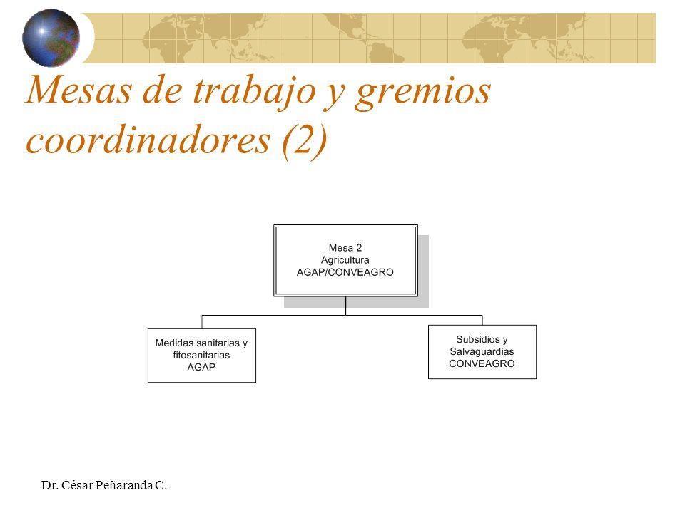 Mesas de trabajo y gremios coordinadores (2) Dr. César Peñaranda C.