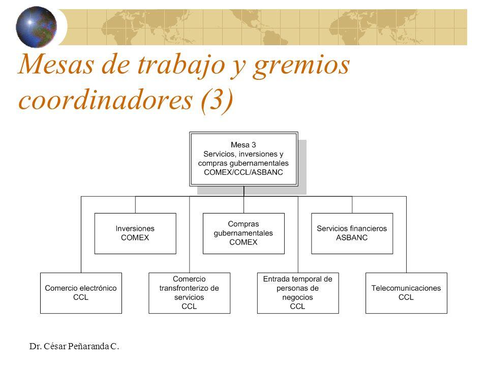 Mesas de trabajo y gremios coordinadores (3) Dr. César Peñaranda C.