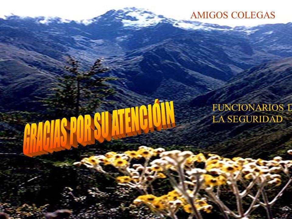 AMIGOS COLEGAS FUNCIONARIOS DE LA SEGURIDAD