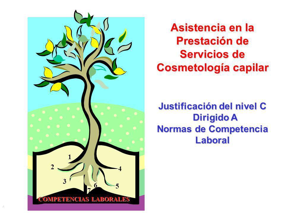 . 1 2 3 4 5 6 7 Asistencia en la Prestación de Servicios de Cosmetología capilar Justificación del nivel C Dirigido A Dirigido A Normas de Competencia