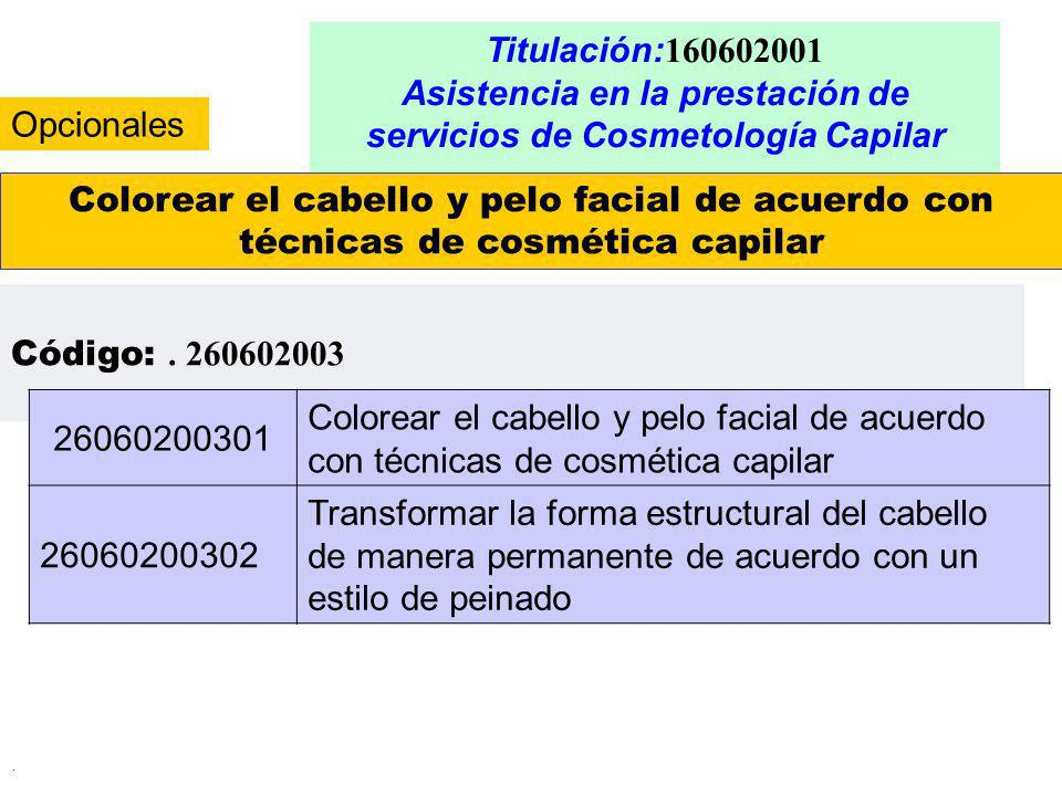 . Titulación: 160602001 Asistencia en la prestación de servicios de Cosmetología Capilar Colorear el cabello y pelo facial de acuerdo con técnicas de
