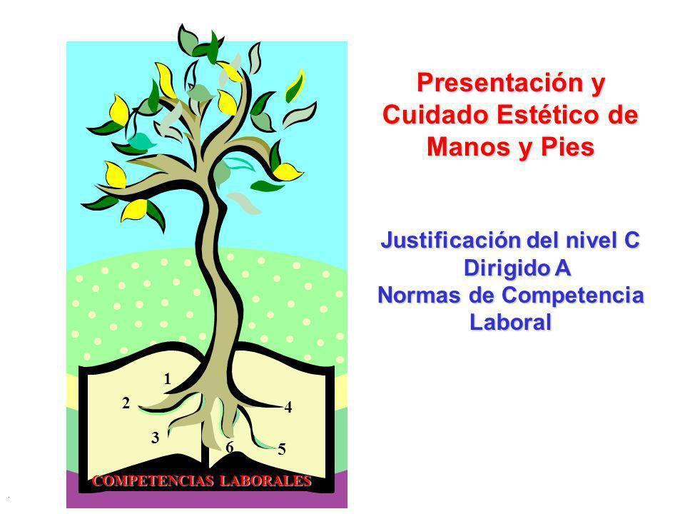 . 1 2 3 4 5 6 Presentación y Cuidado Estético de Manos y Pies Justificación del nivel C Dirigido A Dirigido A Normas de Competencia Laboral COMPETENCI