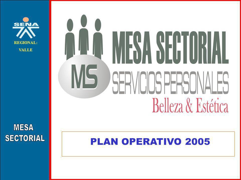 . REGIONAL: VALLE PLAN OPERATIVO 2005
