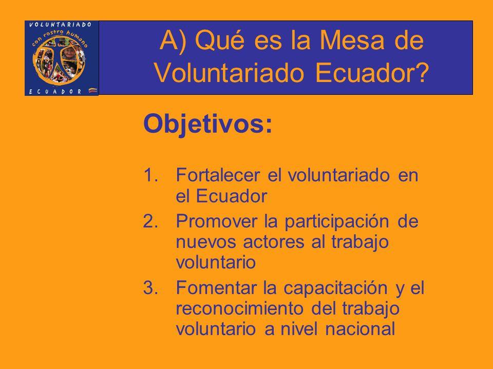 Historia: En Octubre de 2004 se estableció la conformación de la MVE, propuesta planteada por el Programa de Voluntarios de Naciones Unidas, UNV, liderada por Daizen Oda, quien desde su inicio actúa como Coordinador.