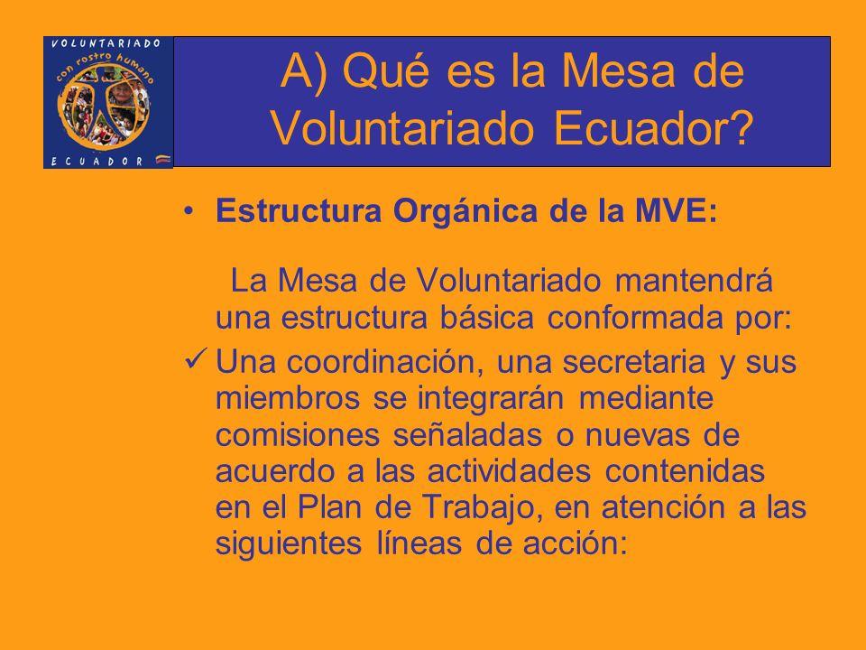 Estructura Orgánica de la MVE: La Mesa de Voluntariado mantendrá una estructura básica conformada por: Una coordinación, una secretaria y sus miembros se integrarán mediante comisiones señaladas o nuevas de acuerdo a las actividades contenidas en el Plan de Trabajo, en atención a las siguientes líneas de acción: A) Qué es la Mesa de Voluntariado Ecuador?