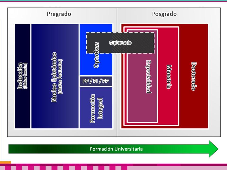 Ejes y campos de aprendizaje La profesión en el mapa del conocimiento.