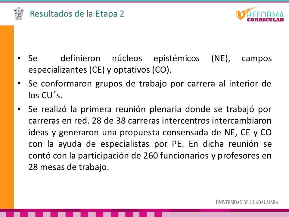 Resultados de la Etapa 2 Se definieron núcleos epistémicos (NE), campos especializantes (CE) y optativos (CO). Se conformaron grupos de trabajo por ca