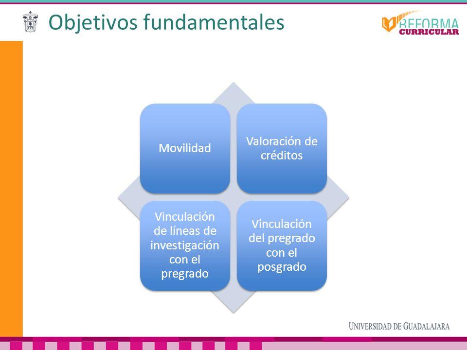 Objetivos fundamentales Movilidad Valoración de créditos Vinculación de líneas de investigación con el pregrado Vinculación del pregrado con el posgra