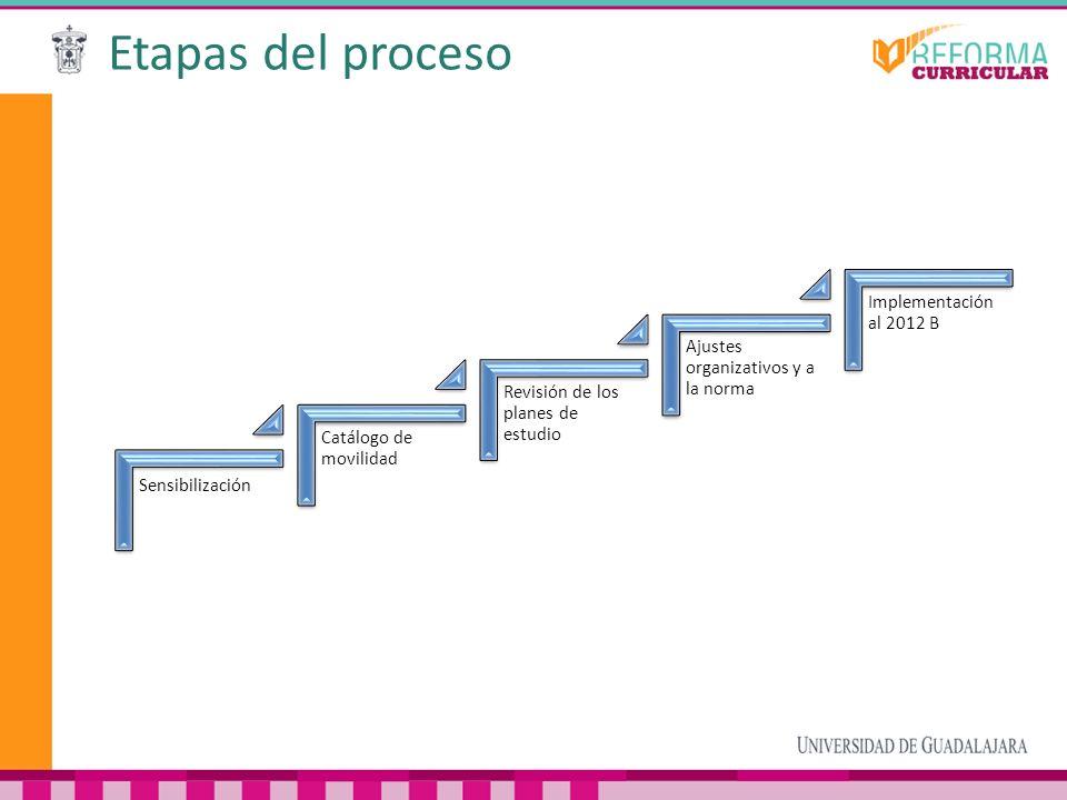 Etapas del proceso Sensibilización Catálogo de movilidad Revisión de los planes de estudio Ajustes organizativos y a la norma Implementación al 2012 B