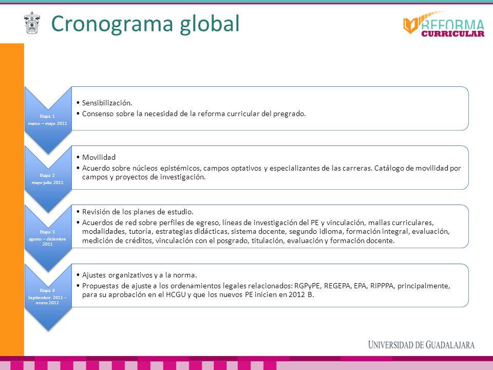 Cronograma global Etapa 1 marzo – mayo 2011 Sensibilización. Consenso sobre la necesidad de la reforma curricular del pregrado. Etapa 2 mayo-julio 201
