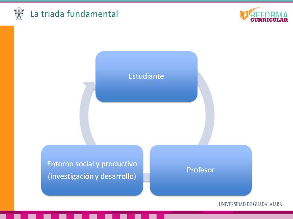 La triada fundamental EstudianteProfesor Entorno social y productivo (investigación y desarrollo)