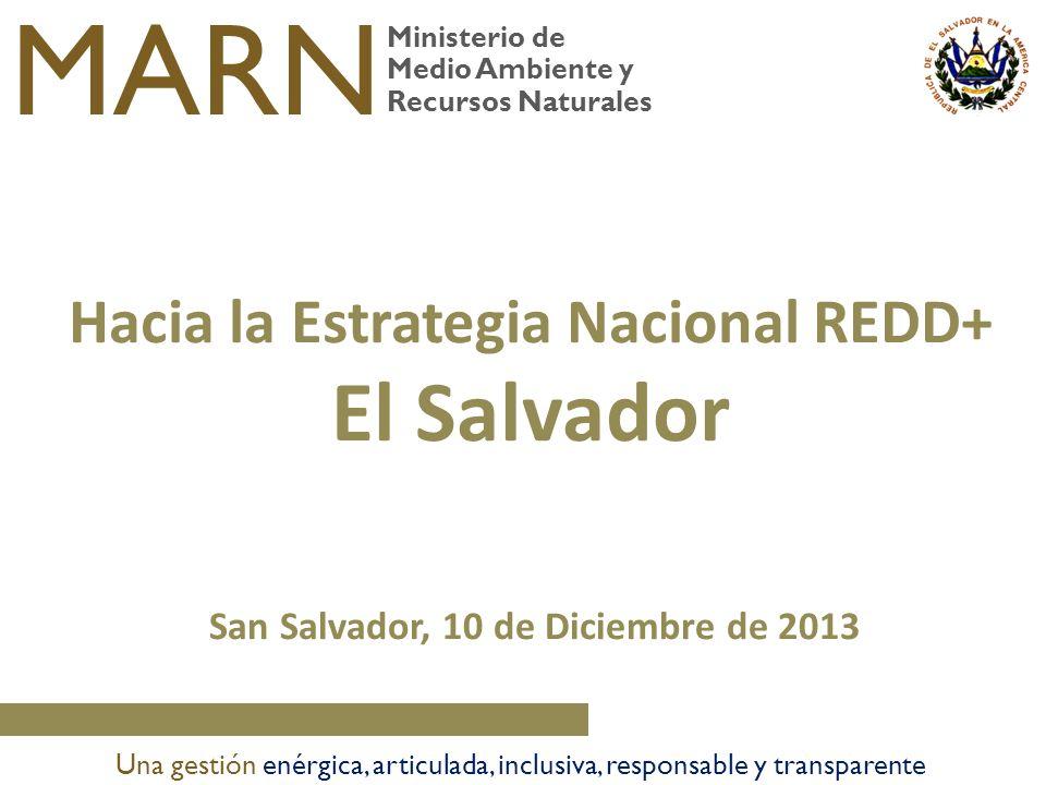 Ministerio de Medio Ambiente y Recursos Naturales MARN Una gestión enérgica, articulada, inclusiva, responsable y transparente San Salvador, 10 de Dic