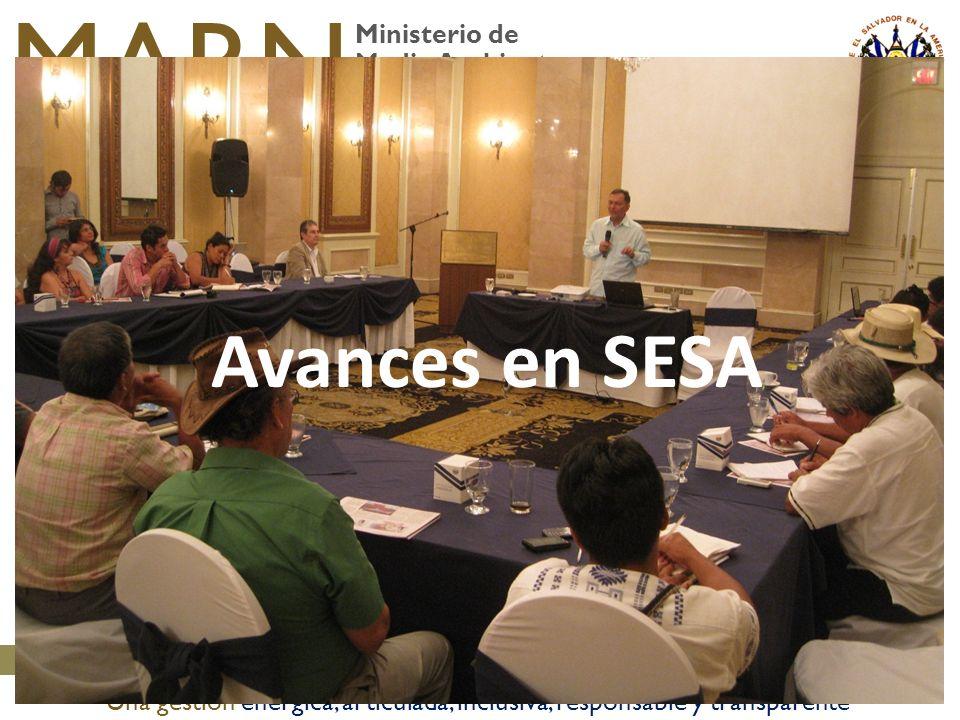 Ministerio de Medio Ambiente y Recursos Naturales MARN Una gestión enérgica, articulada, inclusiva, responsable y transparente Avances en SESA