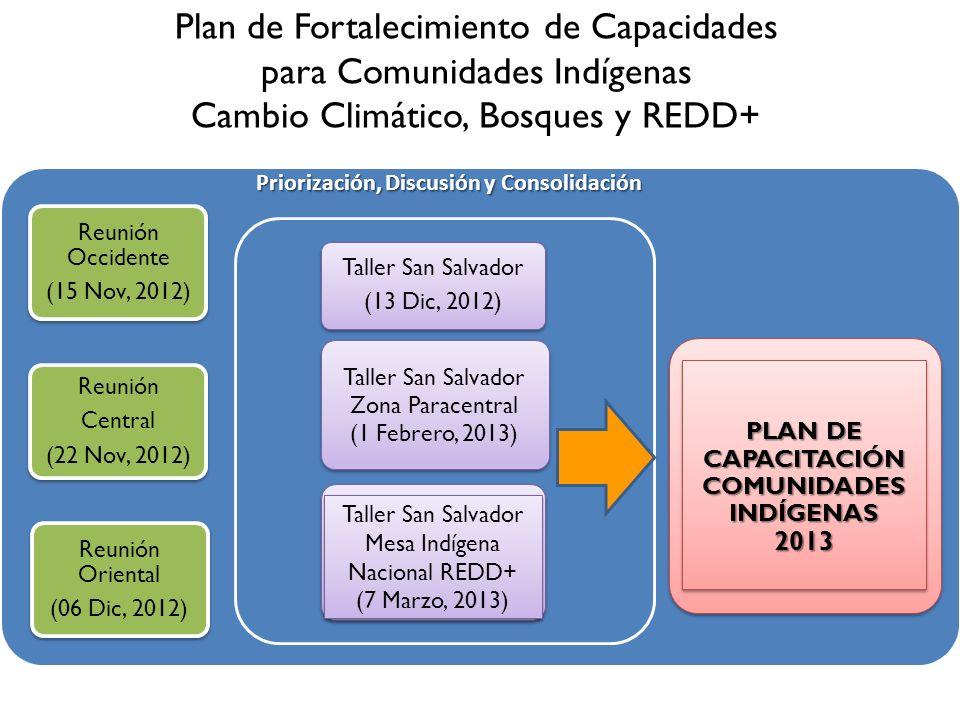 Plan de Fortalecimiento de Capacidades para Comunidades Indígenas Cambio Climático, Bosques y REDD+ Reunión Occidente (15 Nov, 2012) Reunión Central (